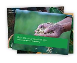 Riso - Unterrichtsmaterial Reis kostenlos downloaden bei RISO